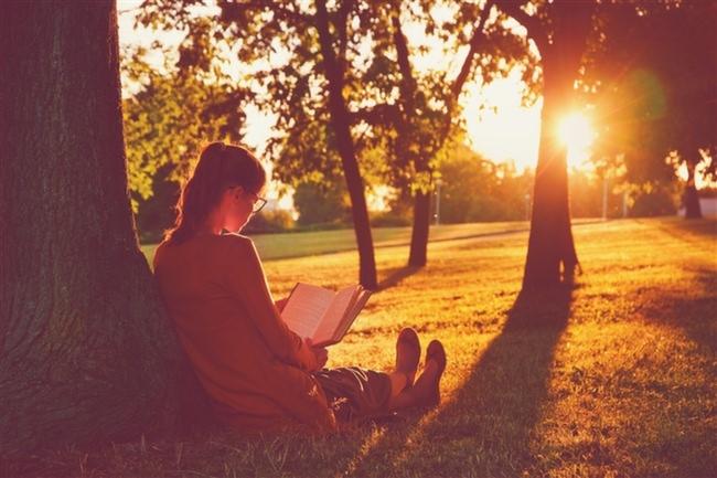 Kitap-Okumak-Ağaç